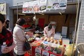 2017京都大阪Day2:東福寺 (12).JPG