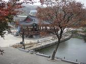 韓國首爾day3:DSC00581.JPG