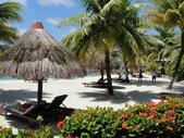2012帛琉:DSC08863.JPG