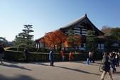 2017京都大阪Day2:東福寺 (15).JPG