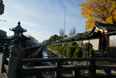 2016京都大阪Day2:西本願寺 (5).JPG
