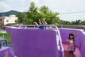 2018台中:台中紫色風車 (7)小.jpg