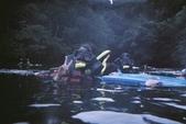 2012帛琉:難得一張~在水裡一附有點自在的樣子!!