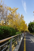 2018釜山Day4:龍頭山公園&釜山塔 (18)小.jpg