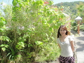 2012帛琉:DSC09010.JPG