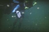 2012帛琉:其實穿戴成這樣~在水裡真的看不出來誰是誰!!