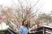 台北:淡水紅樓 (3).JPG