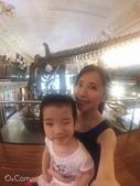台北:台灣博物館 (9).JPG