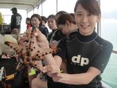 2012帛琉:DSC08549.JPG