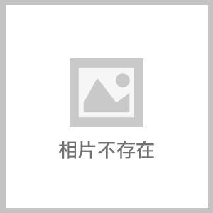 淡水SH hair染髮-2017秋冬新色-霧灰色 (10).JPG - 開箱體驗