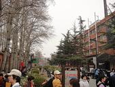 北京day4:DSC03116.JPG