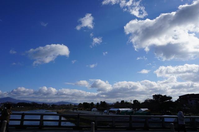 嵐山 (10).JPG - 2016京都大阪Day3