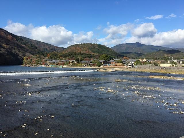 嵐山 (47).JPG - 2016京都大阪Day3