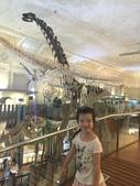 台北:台灣博物館 (7).JPG