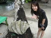 2012帛琉:DSC08344.JPG