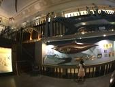 台北:台灣博物館 (21).JPG