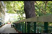 芝山文化生態綠園:08110217.jpg