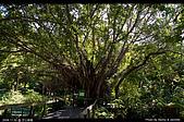 芝山文化生態綠園:08110220.jpg