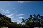 芝山文化生態綠園:08110222.jpg