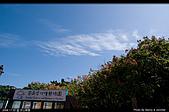 芝山文化生態綠園:08110223.jpg