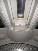 TOSHIBA東芝15公斤洗衣機內槽:IMG_20210123_185129.jpg