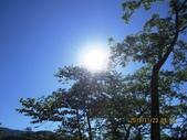 102.11.23南投天梯杉林溪:IMG_0734.JPG