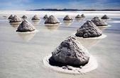 世界十大迷人沙漠:6、世界上最大的鹽沙漠:玻利維亞的烏尤尼鹽原