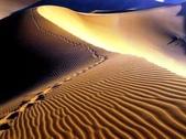 世界十大迷人沙漠:11、唯一有大象行走的沙漠:納米比亞的納米比沙漠