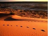 世界十大迷人沙漠:14、紅色的沙漠:澳大利亞的辛普森沙漠