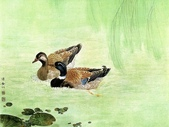 鄒傳安~工筆花鳥畫:鄒傳安~工筆花鳥畫17.jpg