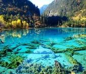 世界各地迷人的風光:中國四川省九寨溝的五花海.jpg