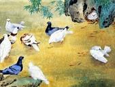 鄒傳安~工筆花鳥畫:鄒傳安~工筆花鳥畫06.jpg