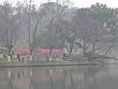 杭州-西湖:FILE0014-西湖-中山公園.JPG