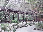 杭州-西湖:FILE0016.JPG
