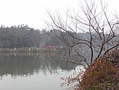 杭州-西湖:FILE0010-西湖-.JPG