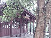 杭州-西湖:FILE0021.JPG