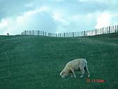 2005年05/17-24的紐西蘭: