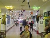 96康橋雙語中小學園遊會:1550298625.jpg