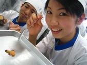 ★ 東京製菓学校 ★<2006四月~2007三月> 一年目:1152366364.jpg