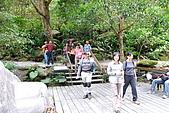 天空步道-錐麓古道:DSC_8008.JPG