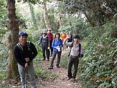 三峽鳶山縱走:DSCN1750.JPG