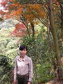 三峽鳶山縱走:DSCN1761.JPG