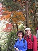 三峽鳶山縱走:DSCN1762.JPG