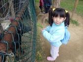 2009/11/28 北埔控窯:P1000134.JPG