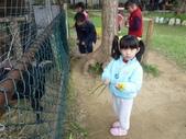 2009/11/28 北埔控窯:P1000130.JPG