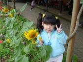 2009/11/28 北埔控窯:P1000128.JPG