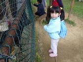 2009/11/28 北埔控窯:P1000138.JPG