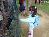2009/11/28 北埔控窯:P1000136.JPG