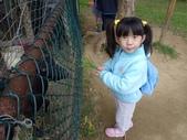 2009/11/28 北埔控窯:P1000135.JPG