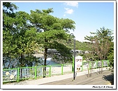 新社花海:IMG_5136A.jpg